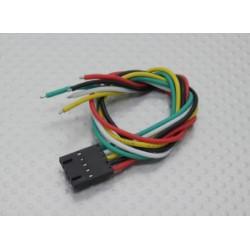 5 Pin Molex Verbindungskabel_10364